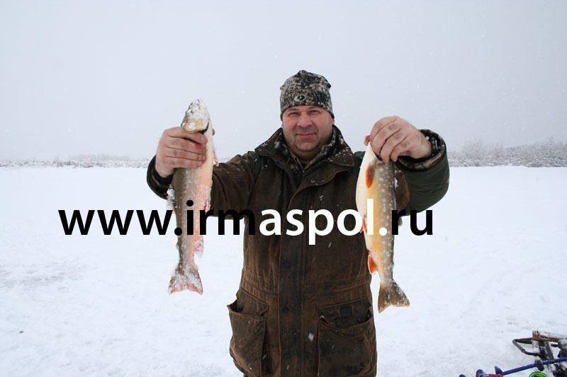ловля гольца на реке авача